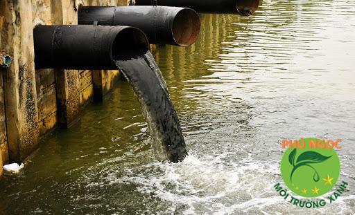 Nước thải chưa được xử lý đổ ra môi trường