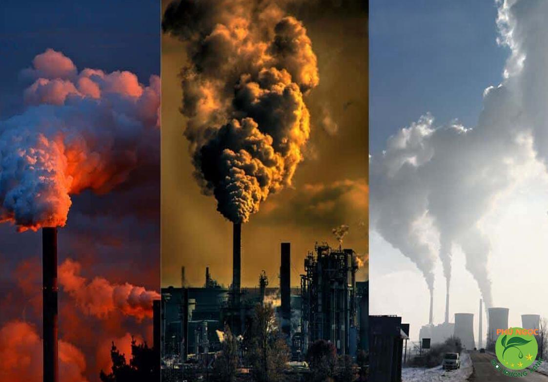 Ô nhiễm môi trường do khí thải