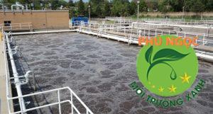 Thu gom xử lý chất thải