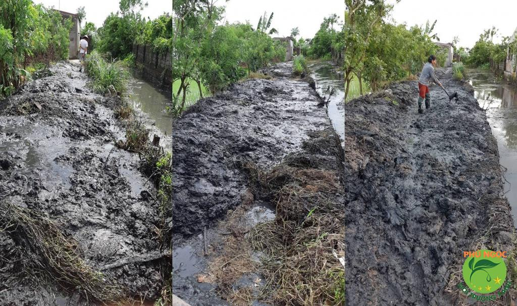 Theo quy định bùn nạo vét kênh mương buộc phải giao cho đơn vị có chức năng thu gom xử lý