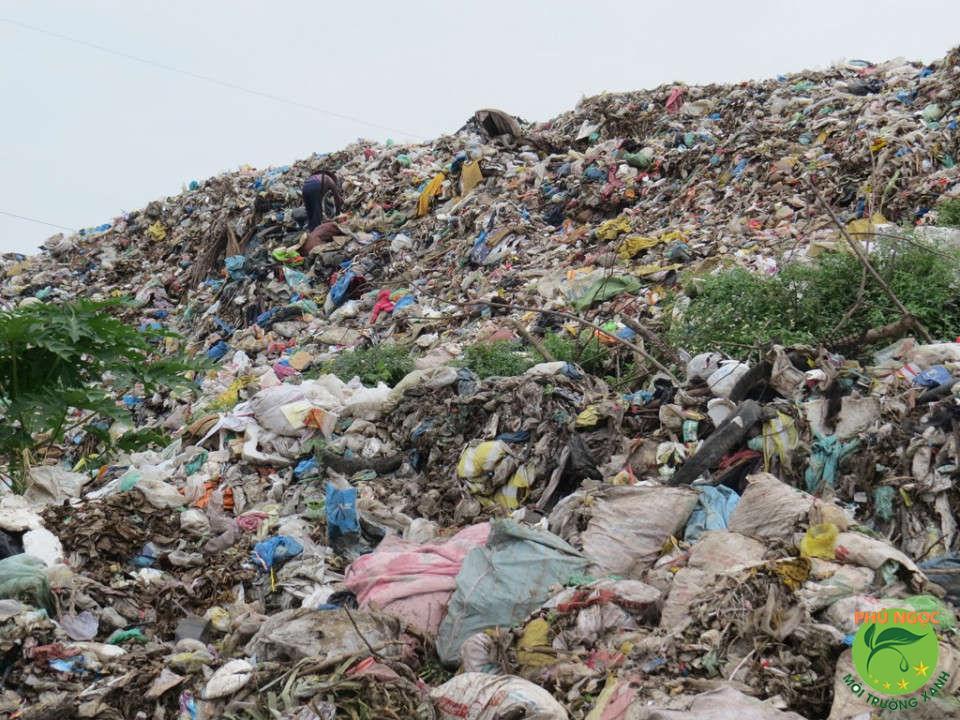 Cách tự thu gom rác thải sinh hoạt đúng tiêu chuẩn