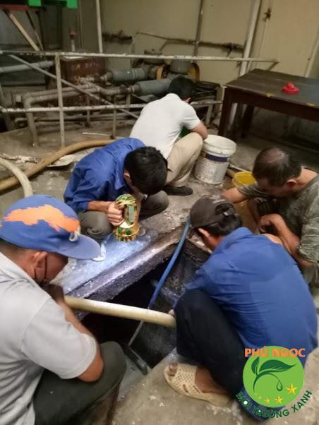 Đơn vị hút hầm cầu uy tín ở Krông Pa - Phú Ngọc
