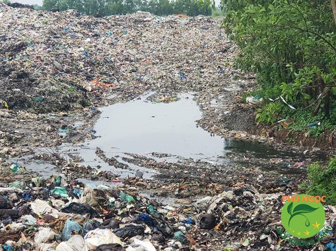 Các việc làm giải quyết vần đề ô nhiễm đất hiệu quả