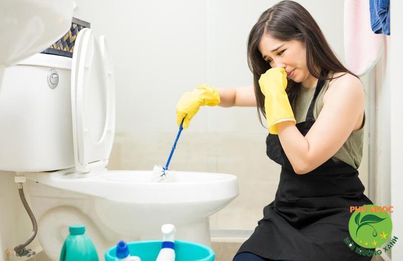 Nhà vệ sinh của bạn luôn có mùi hôi khó chịu dù bạn thường xuyên dọn dẹp