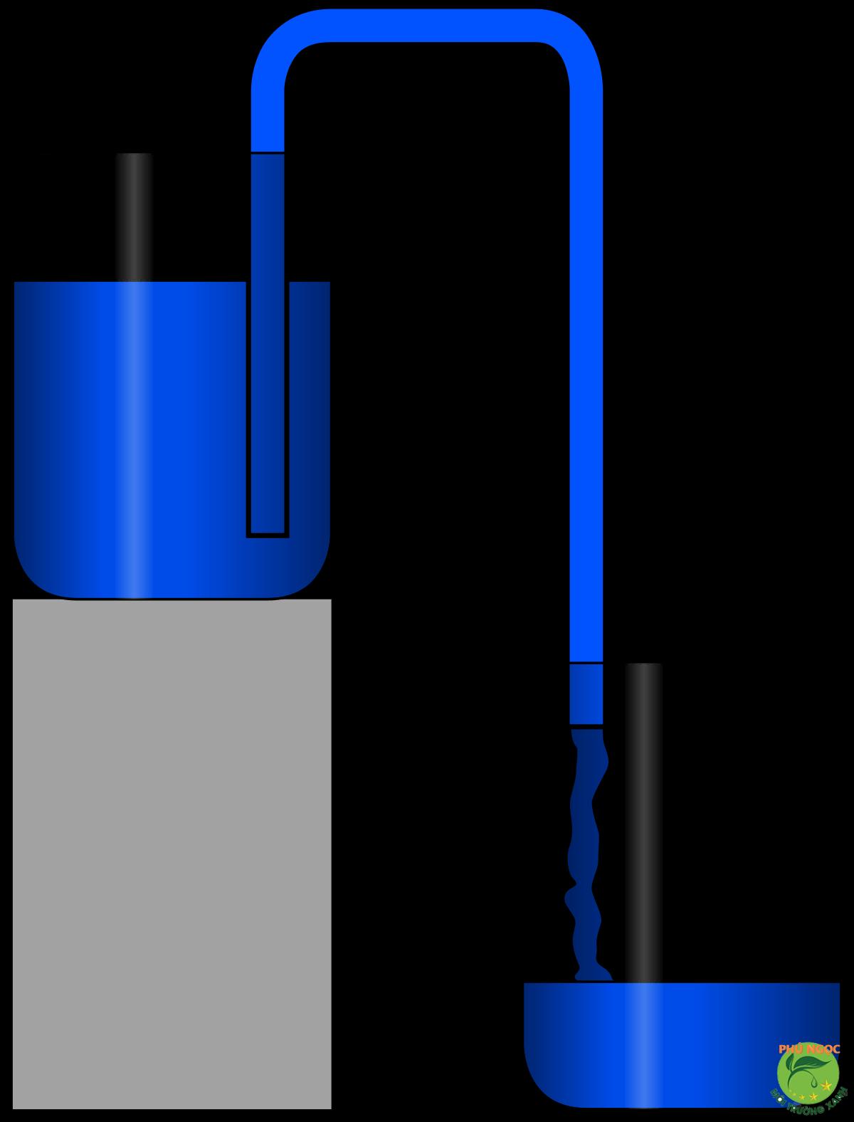 Siphon hay còn gọi là xi-phông là thiết bị hỗ trợ quan trọng trong sinh hoạt đời sống