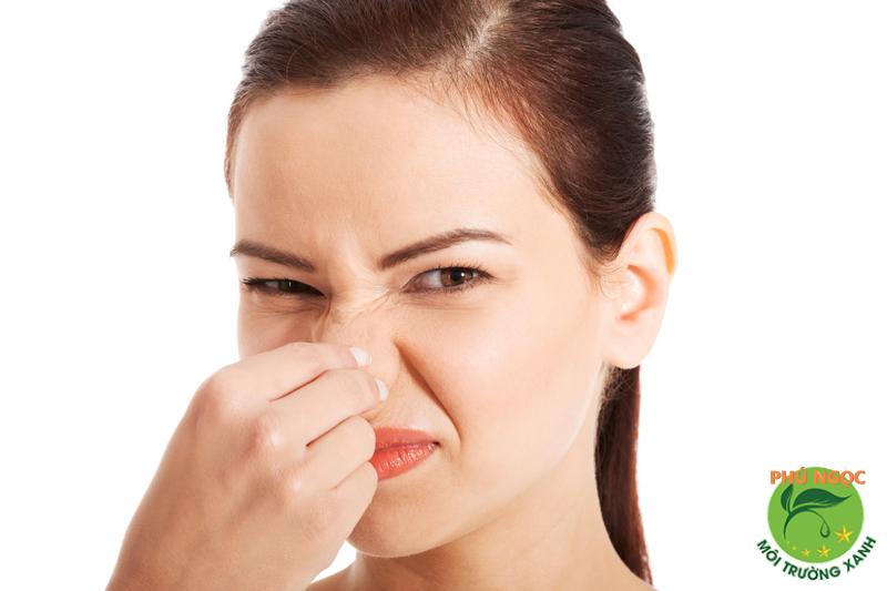 Ống cống bốc lên mùi hôi khó chịu
