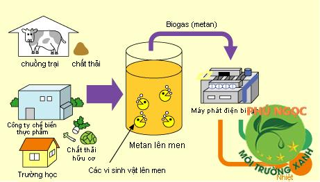 Khí Biogas là gì? Khí Biogas có độc không?
