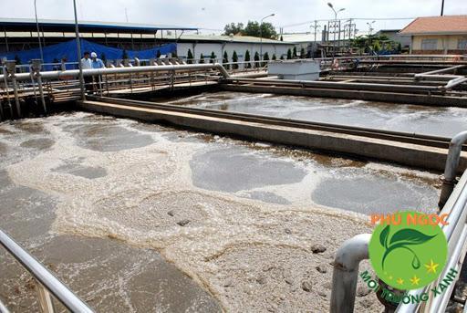 Bùn thải phải được phân loại và nhờ đến công nghệ xử lý, thu gom bùn thải thích hợp