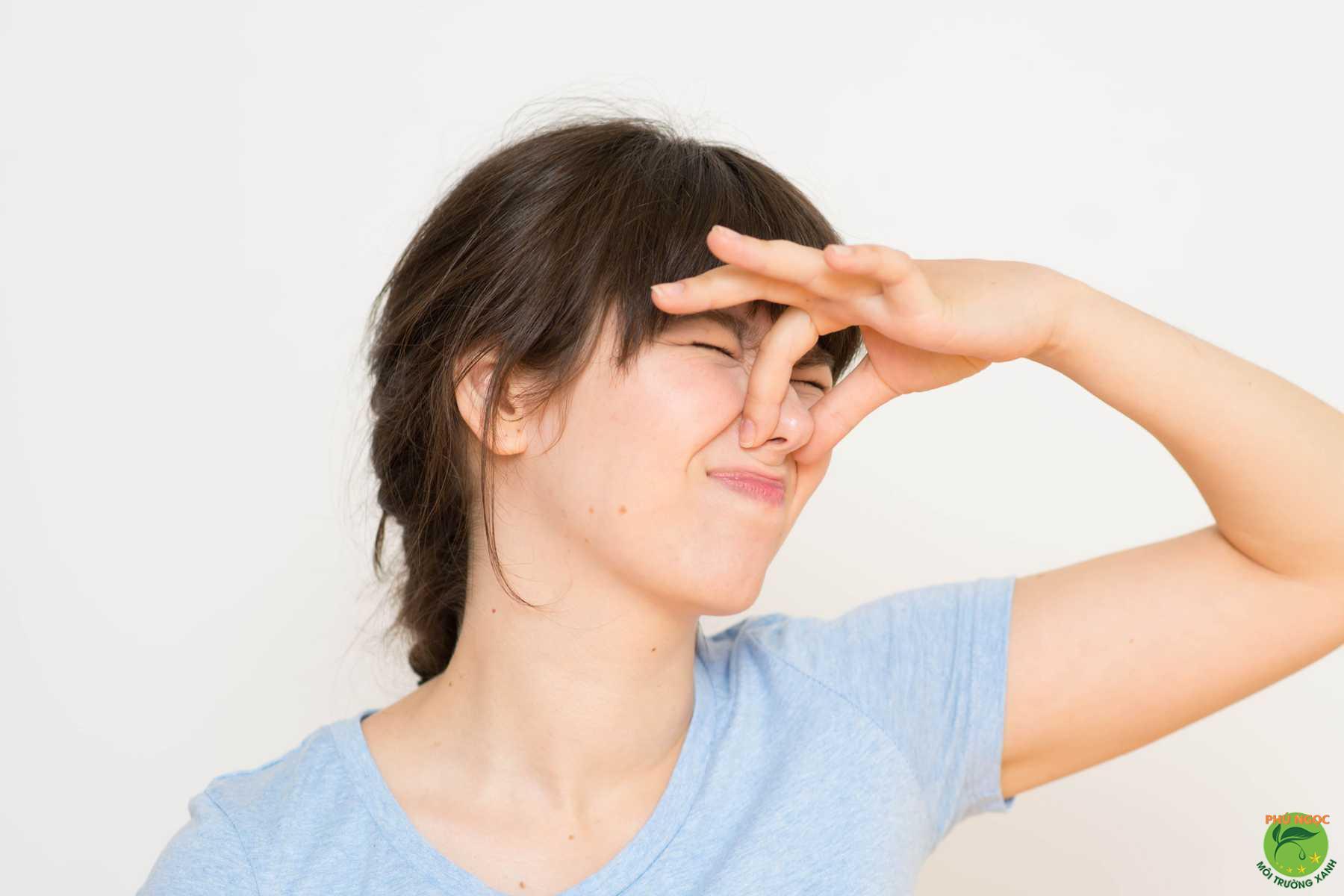 Không hút hầm cầu có thể gây ra các mùi hôi thối ảnh hưởng đến chất lượng cuộc sống